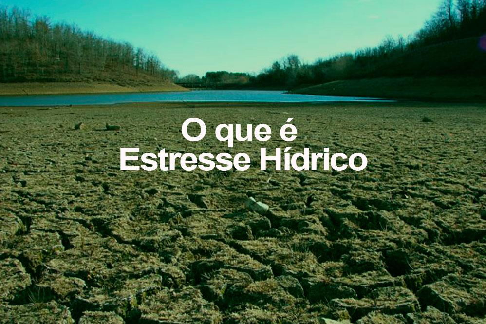 o-q-e-estresse-hidrico