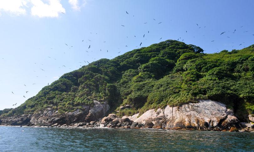 ilha-dos-currais