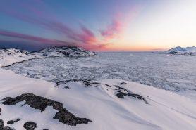 O arau-gigante habitava lugares frios como a Groelândia (acima). Foto: Markus Trienke/Flickr.