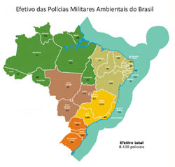 herdeiros_guerrilha_pantaneira_box_03