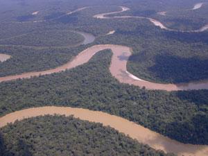 Terra Indígena Vale do Javari, segunda maior do Brasil, e área epidêmica para hepatites virais. Crédito: Acervo Funai/CGIIRC