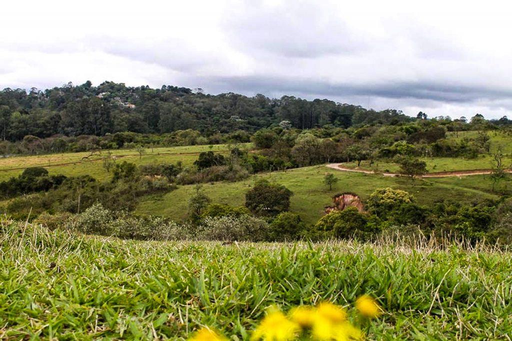 Parque dos Búfalos. Foto: Heber Biella/