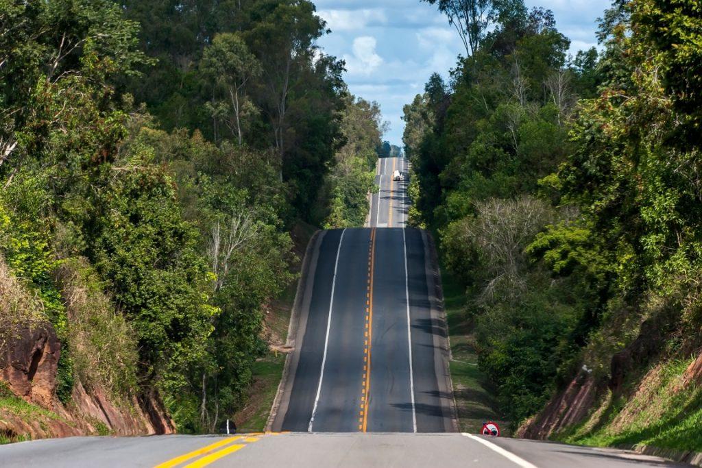 Trecho da BR-101 que corta a Reserva Biológica de Sooretama, no Espírito Santo. Em média, cerca de 3 animais são atropelados todos os dias nessa estrada. Foto: Leonardo Merçon