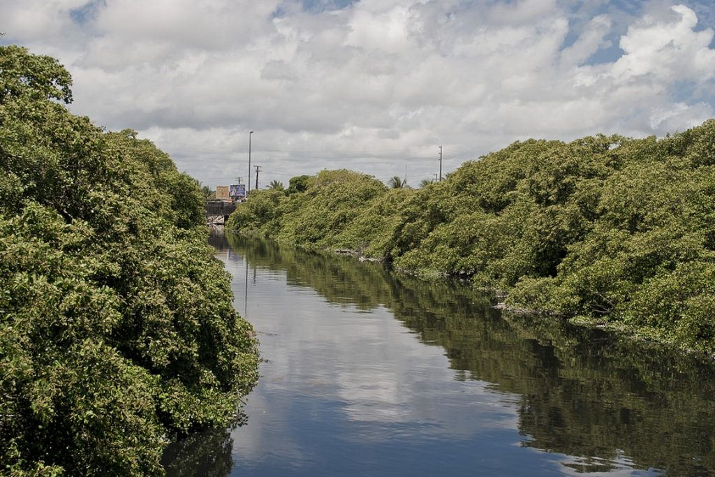 Projeto facilitará licenciar obras em área de proteção permanente. Foto: Bruno de Souza Leão/Fickr.