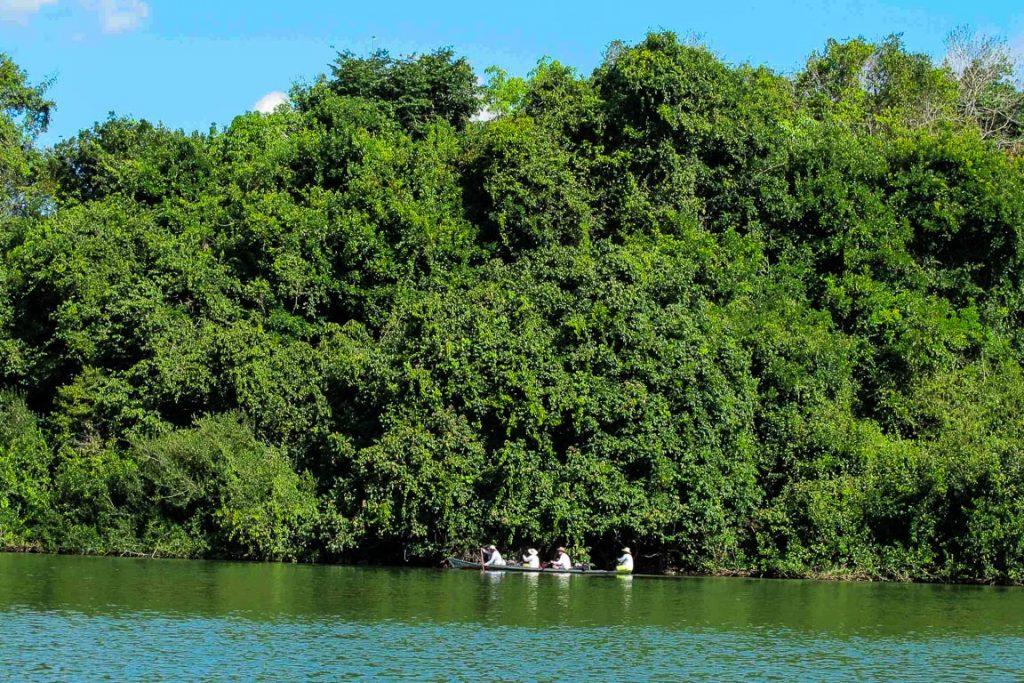 Canoada ByeBye Xingu: 110km remando pelo rio para ver o impacto de Belo Monte. Foto: InfoAmazonia.org