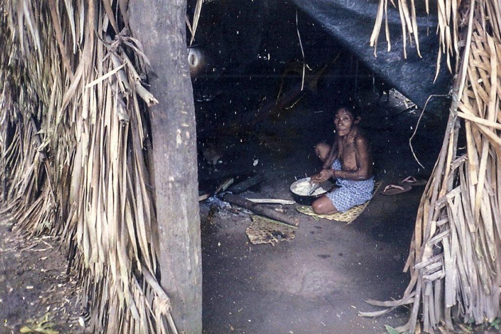 Índia na aldeia do povo Arara, grupo que teve contato há apenas 30 anos. Eles podem ser expulsos da terra pelos madeireiros. Foto: Cimi/Conselho Indigenista Missionário