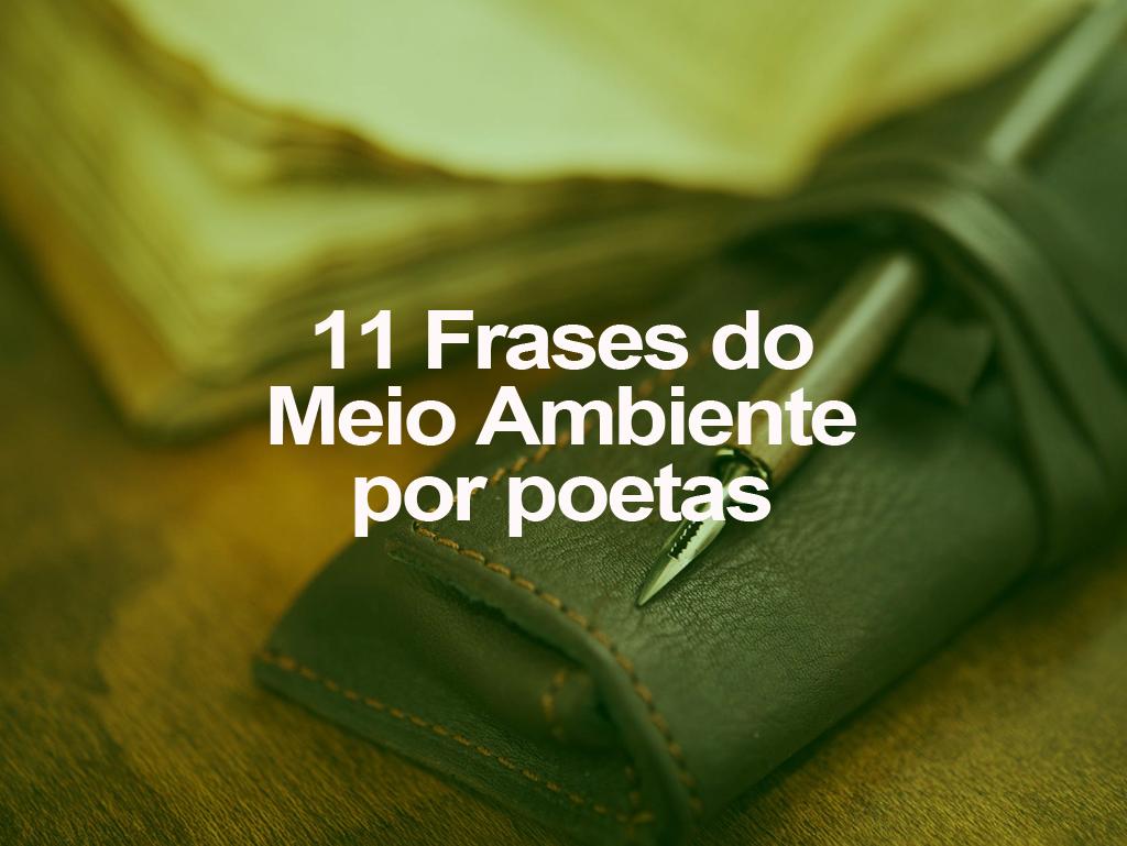11 Frases Do Meio Ambiente Por Poetas Oeco