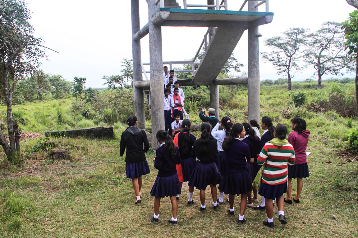 Um grupo de estudantes tira fotos junto a uma das várias plataformas de observação distribuídas pelo parque.