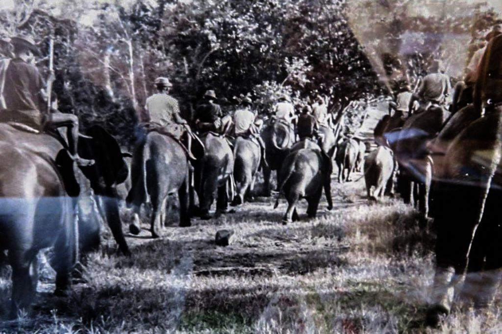 Uma excursão de treinamento a lombo de elefante.