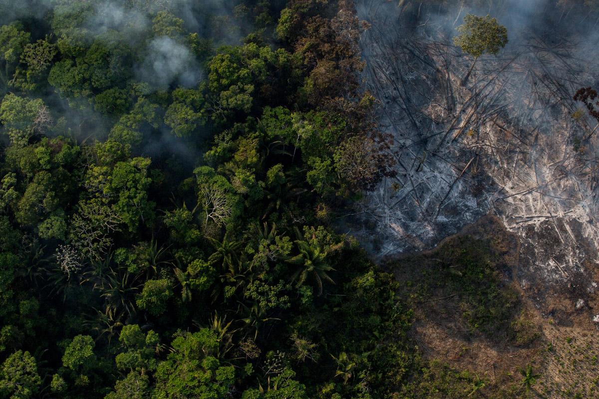 Queimadas para abertura de campo de plantio de soja na região vizinha a Flona Tapajós. Parte das queimadas descontroladas passam para região controlada pelo ICMBio.