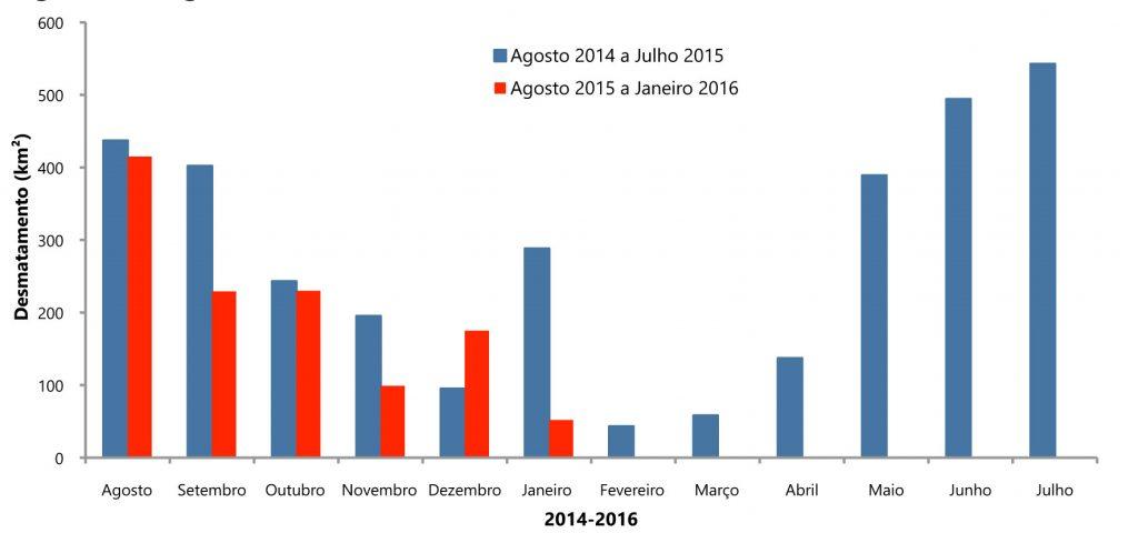 De agosto até janeiro, apenas dezembro aparece com crescimento de taxa: nesse mês, o crescimento foi de 84%.