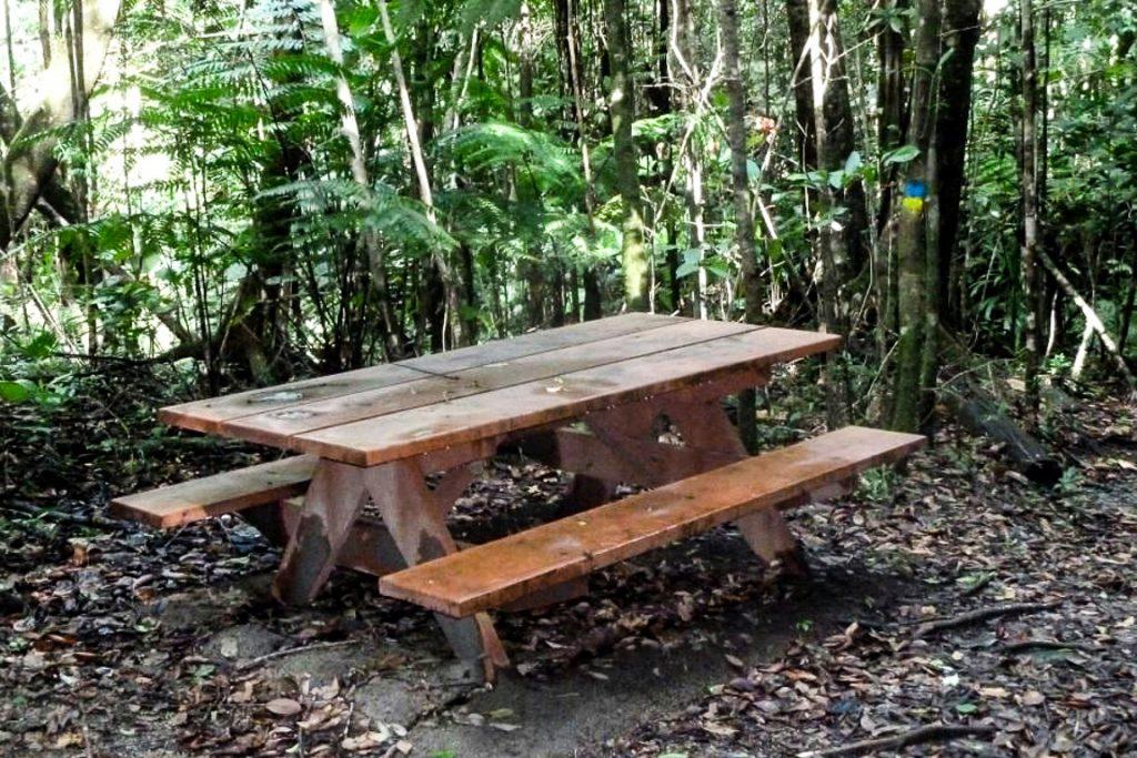 Símbolo democrático de infraestrutura recreativa, a mesa de piquenique é pouco vista nos parques e outras UCs brasileiras. Foto: Pedro Menezes