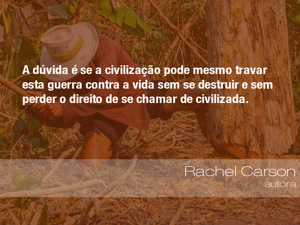 """""""A dúvida é se a civilização pode mesmo travar esta guerra contra a vida sem se destruir e sem perder o direito de se chamar de civilizada."""" - Rachel Carson, autora"""