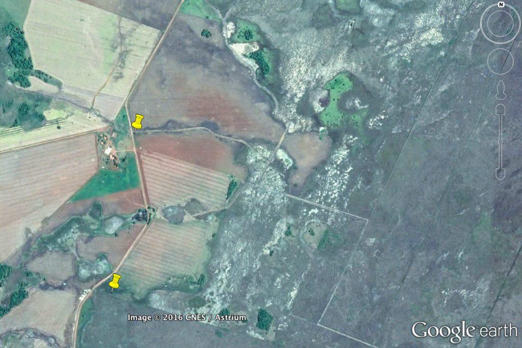 Marcadores mostram pontos onde os dois drenos cruzam a estrada da fazenda, fazendo fluir a água da esquerda para a direita. A área de tons escuros da direita é parte do banhado em sua forma natural. Imagem: Google Earth