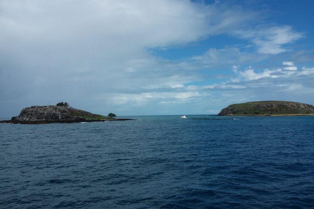Rede de Pesquisas Coral Vivo em expedicao em Abrolhos - laudo foz do Rio Doce - creditos Joseane Marques do Coral Vivo 03 (1).jpg