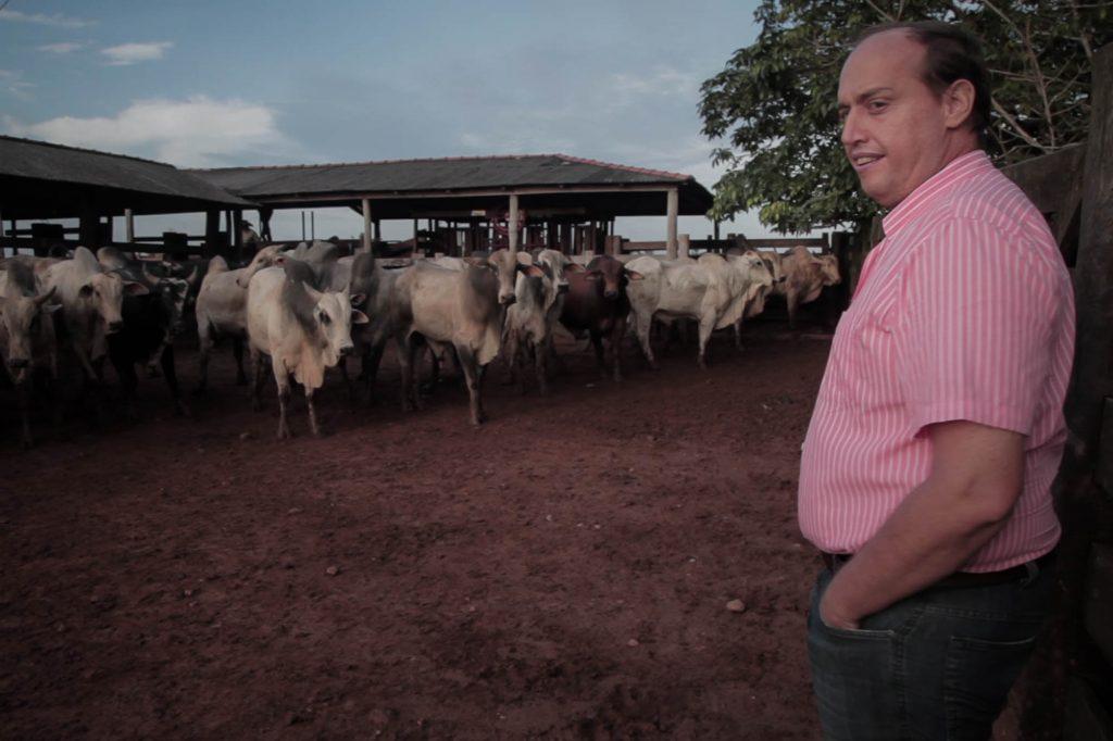 Maurício Fraga supervisiona uma operação de venda de gado vivo para o Oriente Médio.