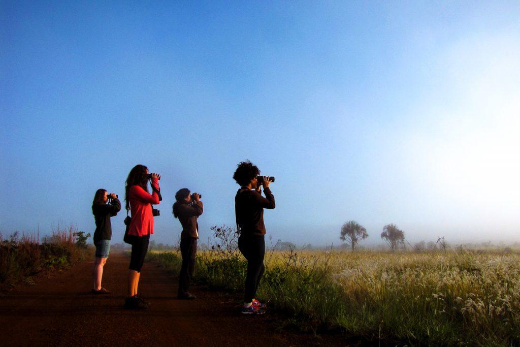 Parque Nacional das Emas. Foto: Simone Mamede