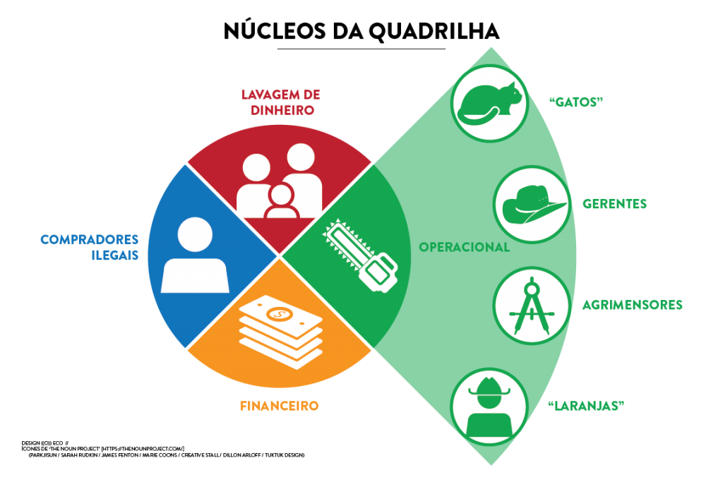 infografico-organizacao