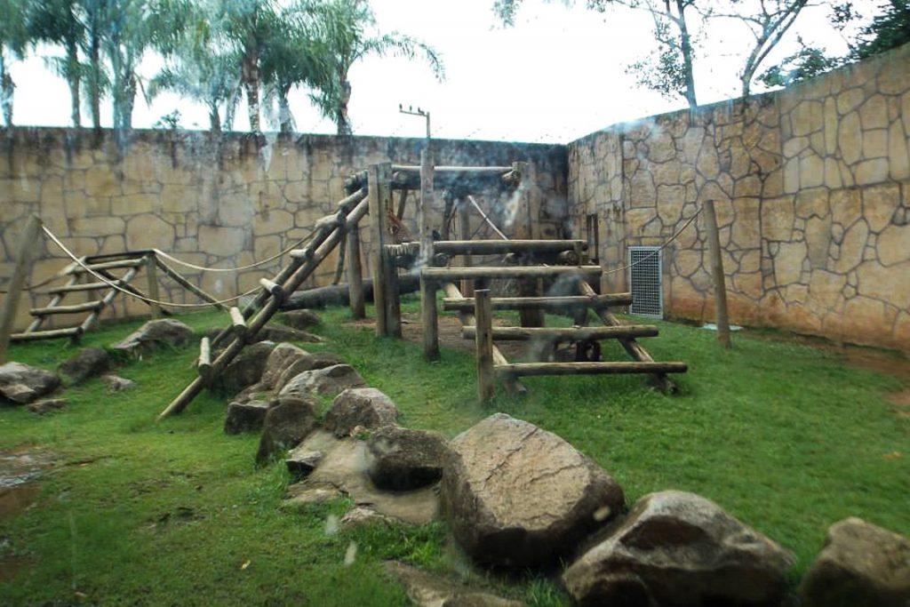 Recinto para chimpanzés no Beto Carrero World. Foto: Igor Morais