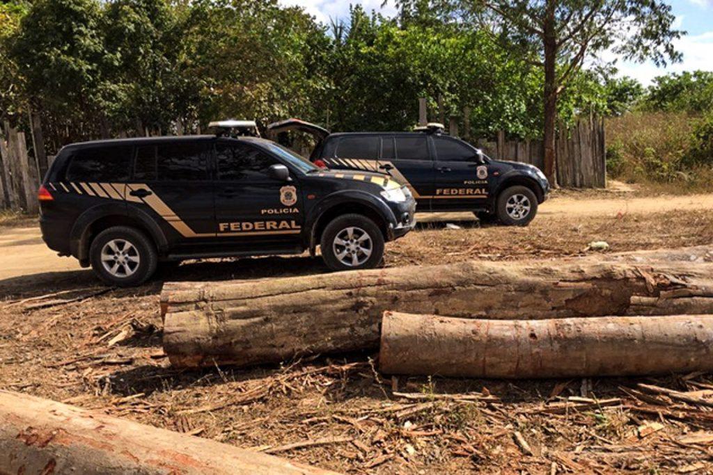 Superintende da PF no Estado afirma que 99% da madeira extraída vem de unidades de conservação, portanto são ilegais. Fotos: Polícia Federal