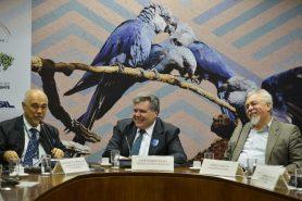 Ministro assina parceria em defesa da ararinha-azul. Foto: José Cruz/Agência Brasil.