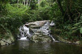 Parque_Estadual_da_Pedra_Branca