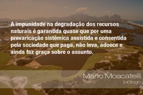 """""""A impunidade na degradação dos recursos naturais é garantida quase que por uma prevaricação sistêmica assistida e consentida pela sociedade que paga, não leva, adoece e ainda faz graça sobre o assunto."""" - Mario Moscatelli, biólogo"""