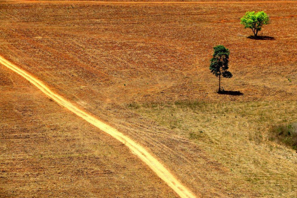 A crise econômica não afetou o desmatamento na Amazônia que elevou as emissões de gases de efeito estufa para 3,5% no ano passado. Foto: Ana Cotta/Flickr.