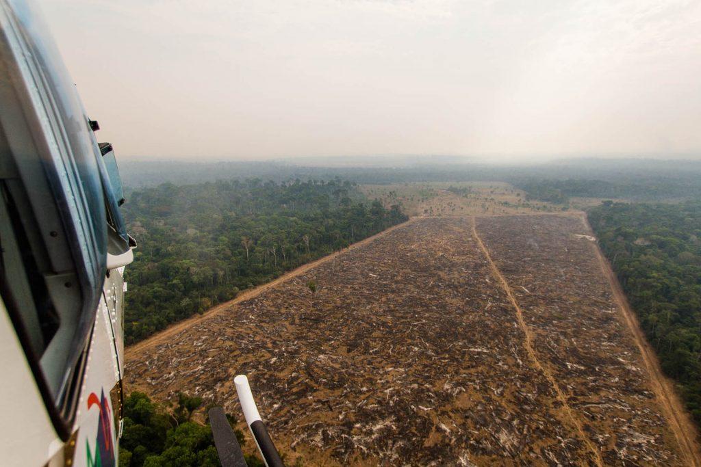 Do Helicóptero é possível observar a devastação causada pelo desmatamento, com objetivo de abrir pastagens e plantação de grãos como soja e arroz.