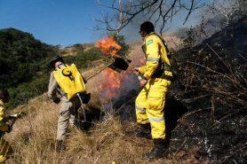 O Serviço de Guarda-Parques do INEA for treinado e equipado com recursos do FMA. Foto: Arquivo Inea