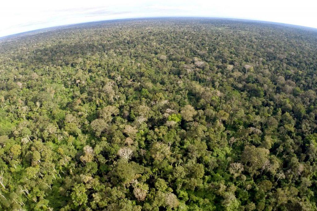 Acre é primeiro estado brasileiro a realizar transações financeiras relacionadas à Redução de Emissões do Desmatamento e Degradação Florestal (REDD+). Foto: Pedro Devani/Secom/Acre.
