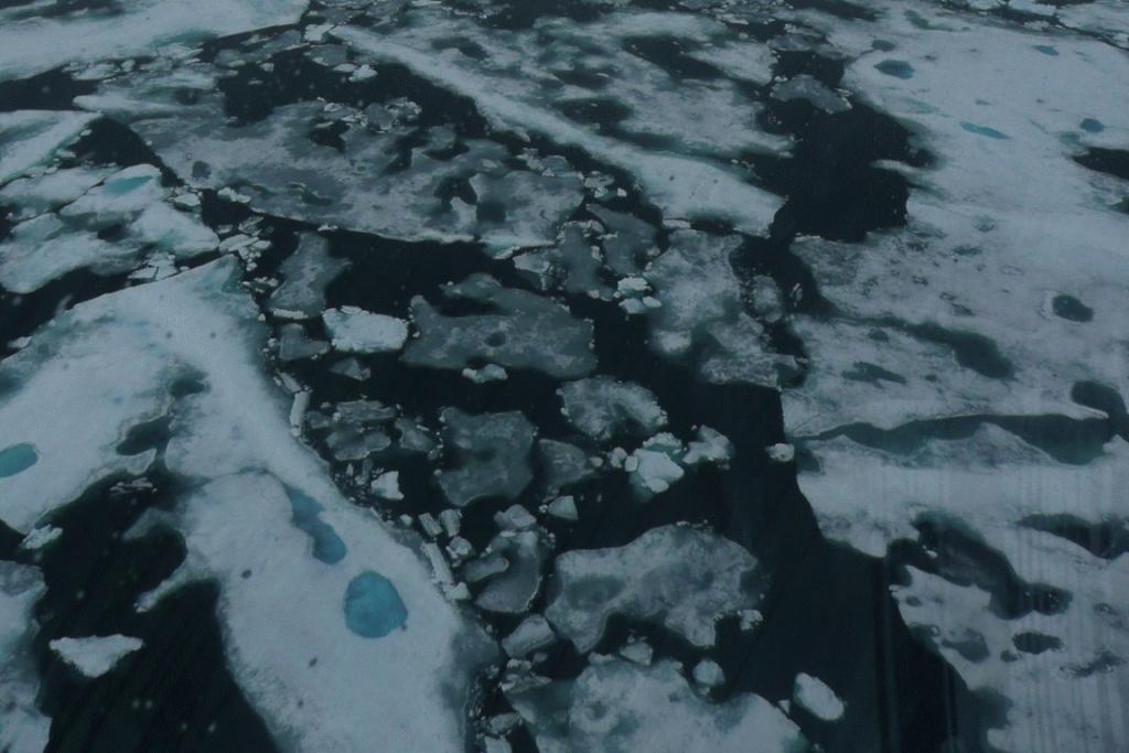 Gelo marinho derrete no verão no Oceano Ártico. Foto: Cláudio Angelo.