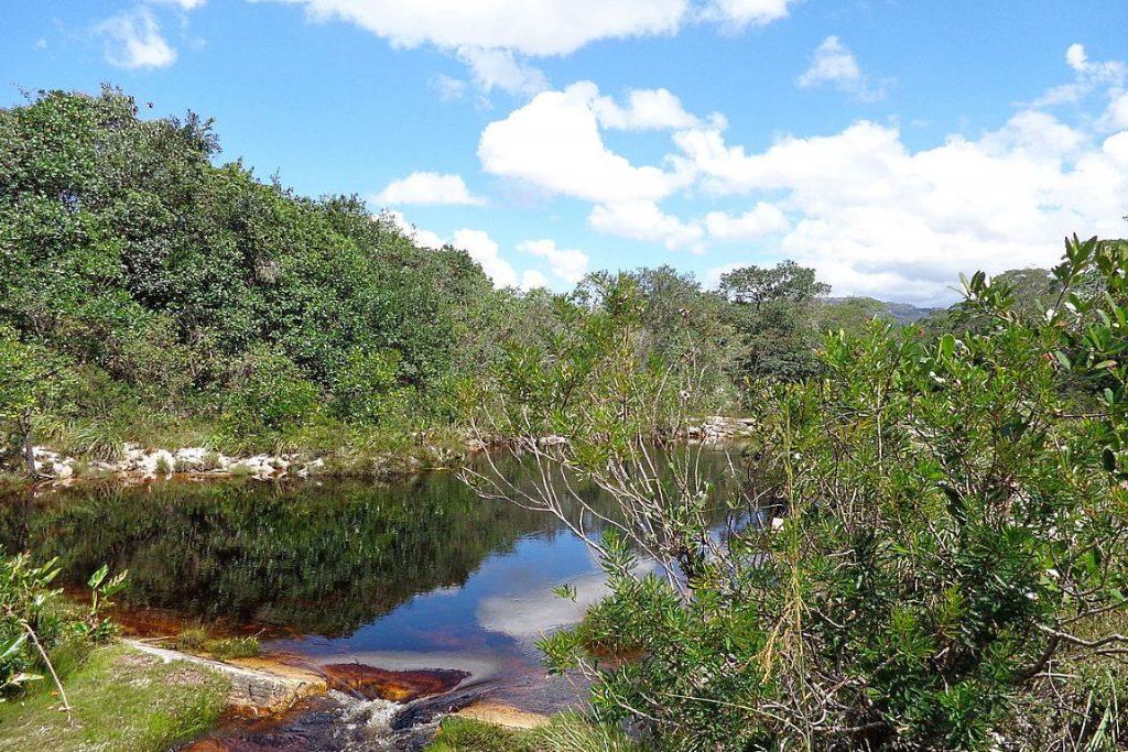 O Parque Estadual do Rio Preto foi uma das unidades fechadas para visitação. Foto: Wikipédia.