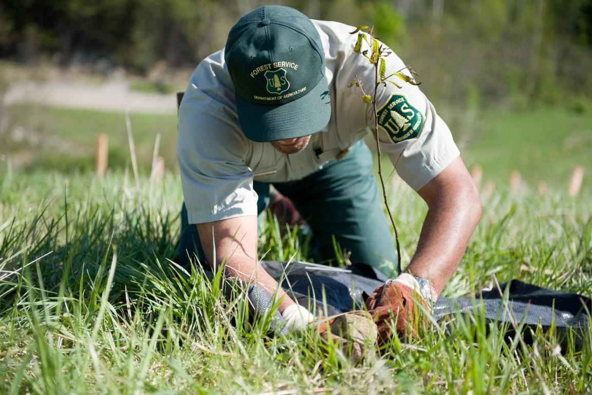 Aproximadamente 25 guardas-florestais foram assassinados por caçadores ilegais e por contrabandistas de madeira, a maior parte na África e na Ásia. Foto: Wayne National Forest.