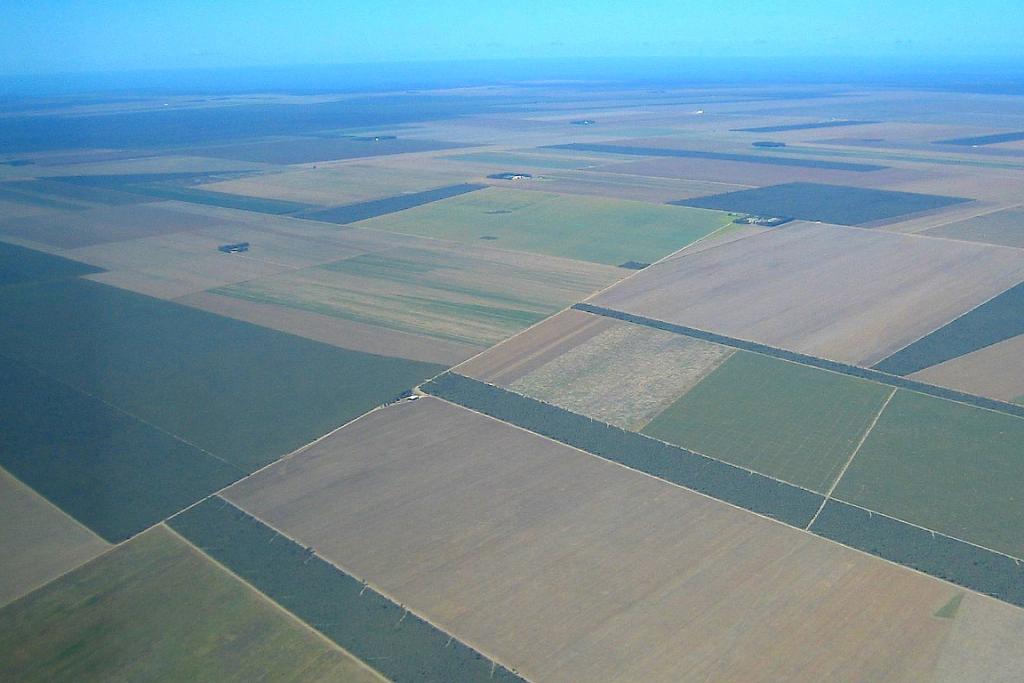 Agricultura em área desmatada de cerrado no Piauí, região do Mapitoba: agronegócio quer operar sem licença. Foto: Panoramio/Creative Commons.