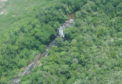 A maior parte do território reduzido de Jamanxim (438 mil ha), foi incorporada ao Parque Nacional do Rio Novo (acima). Foto: ICMBio.