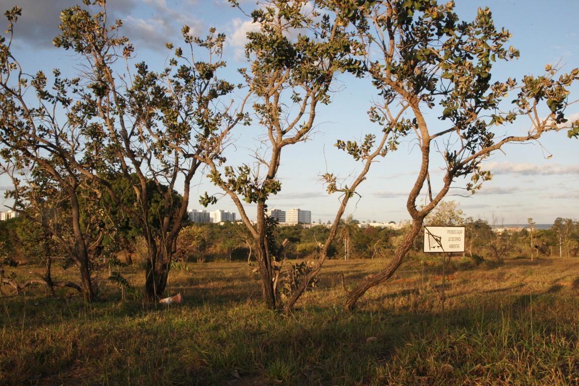 Parque Ecológico Ezechias Heringer, Guará, Brasília, DF. Foto: Toninho Tavares/Agência Brasília/Flickr