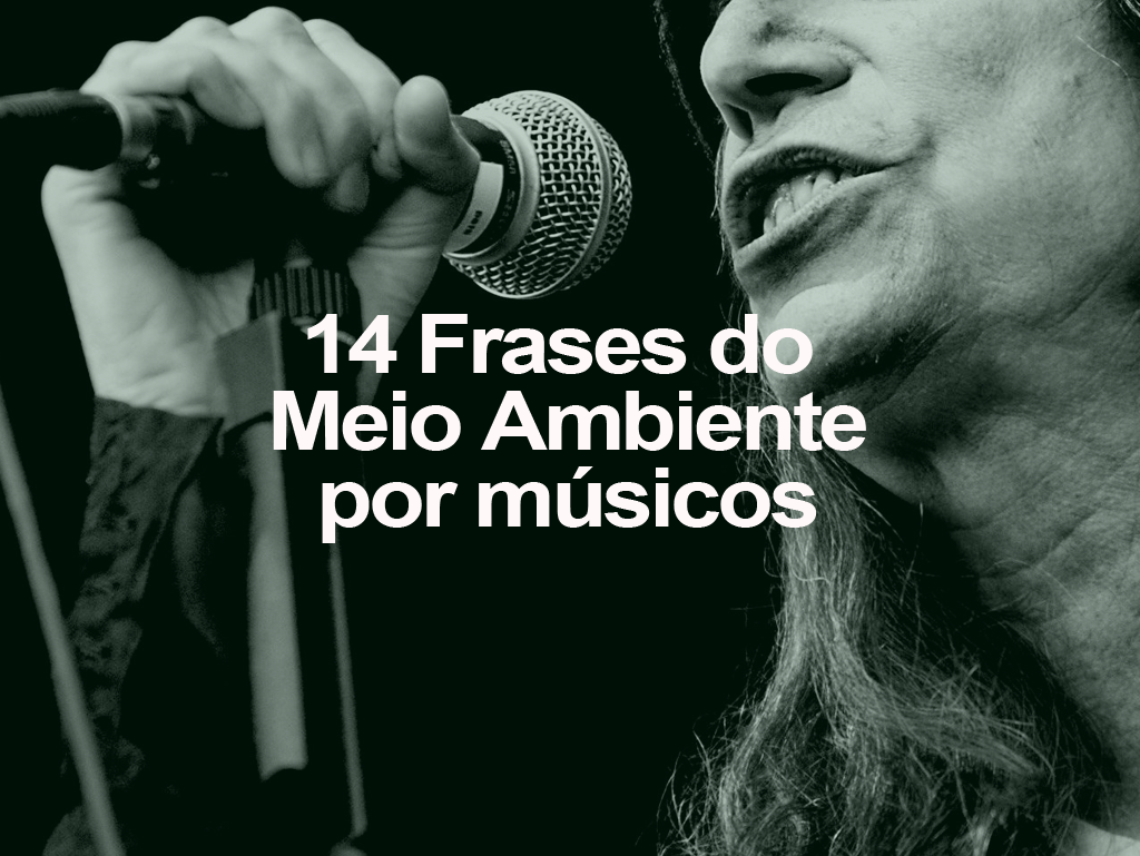 14-frases-musicos