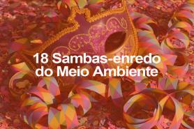 18-frases-samba
