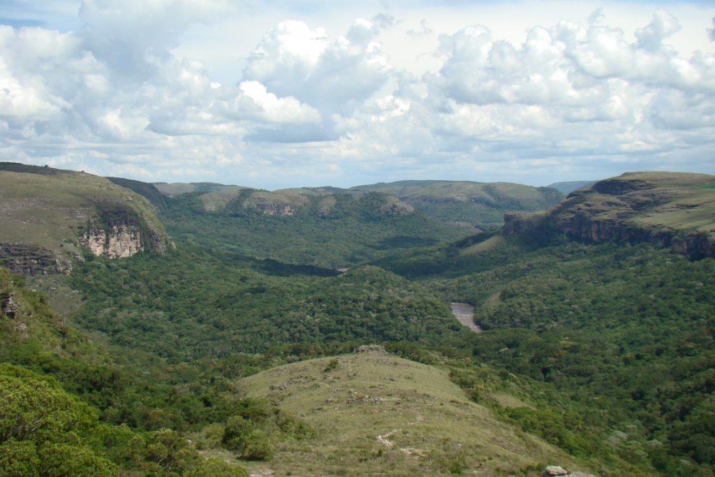 Trilha Mato da Toca, Canyon Guartelá. Foto: Observatório de Justiça e Conservação.