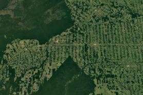 Desmatamento em Rondônia visto pelo satélite Landsat. Imagem: Google Earth.
