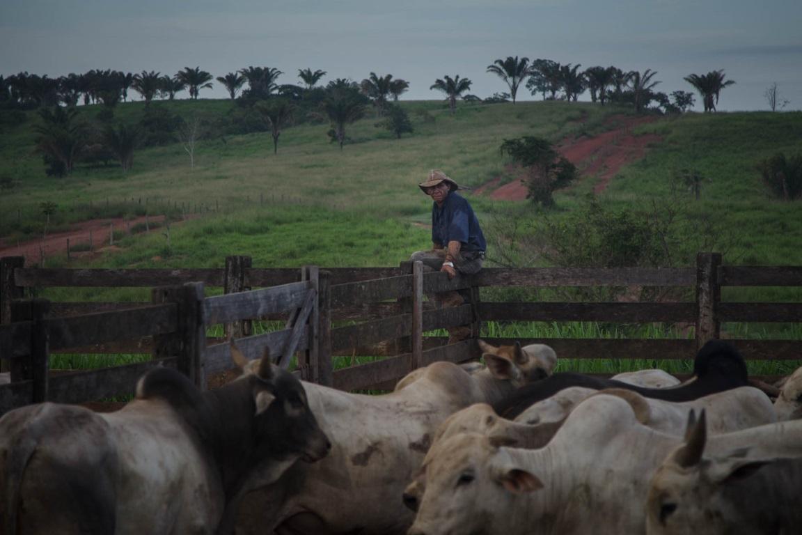 Na Amazônia, o faroeste continua em ação