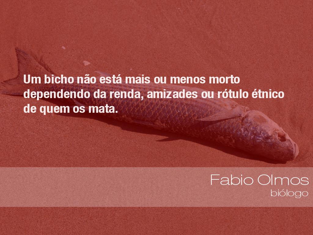 """""""Um bicho não está mais ou menos morto dependendo da renda, amizades ou rótulo étnico de quem os mata."""" - Fabio Olmos, biólogo"""