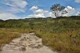 Parque Nacional da Chapada dos Veadeiros. Foto: Mauricio Mercadante/Wikiparques.