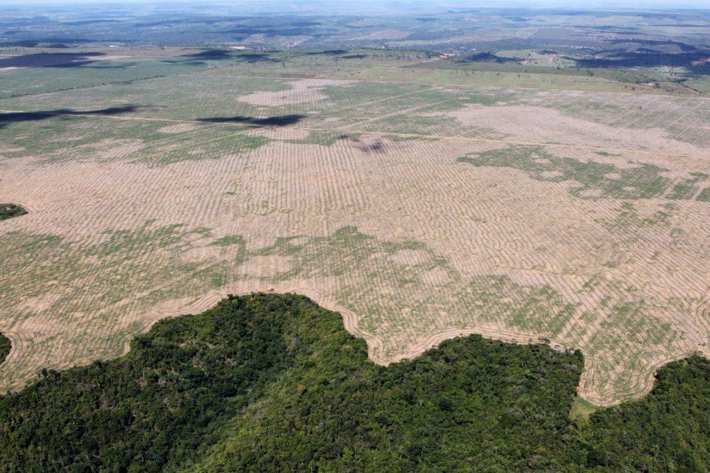 O INPE é responsável por monitorar o desmatamento na Amazônia desde 1988. Foto: Felipe Werneck/Ibama.