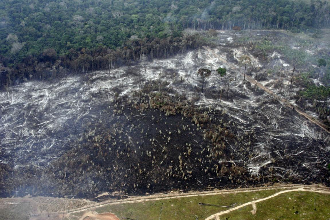 Desmatamento na Floresta Nacional do Bom Futuro, Rondônia. Foto: Divulgação WWF-Brasil/Juvenal Pereira.