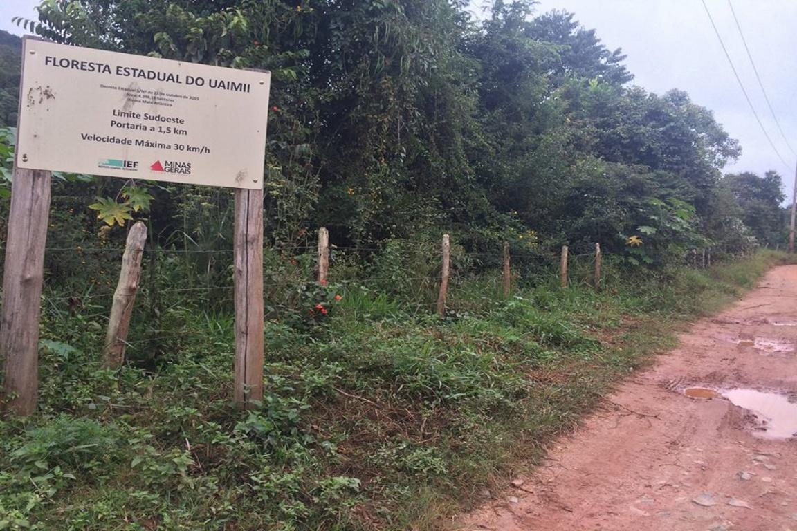 Floresta Estadual do Uaimií - Foto: Amda/Facebook.