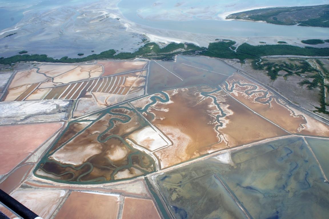 Salineiras. Uma das mais exitosas ações do Ibama, a Operação Ouro Branco, que fiscalizou a atividade salineira (acima) em manguezais, é criticada pelo atual superintendente do Ibama. Foto: Henrique Lage.