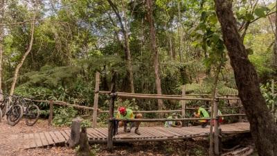 Voluntários preparam um dos três pontilhões de madeira do Circuito Flona. Foto: Marco Sarti/ICMBio.