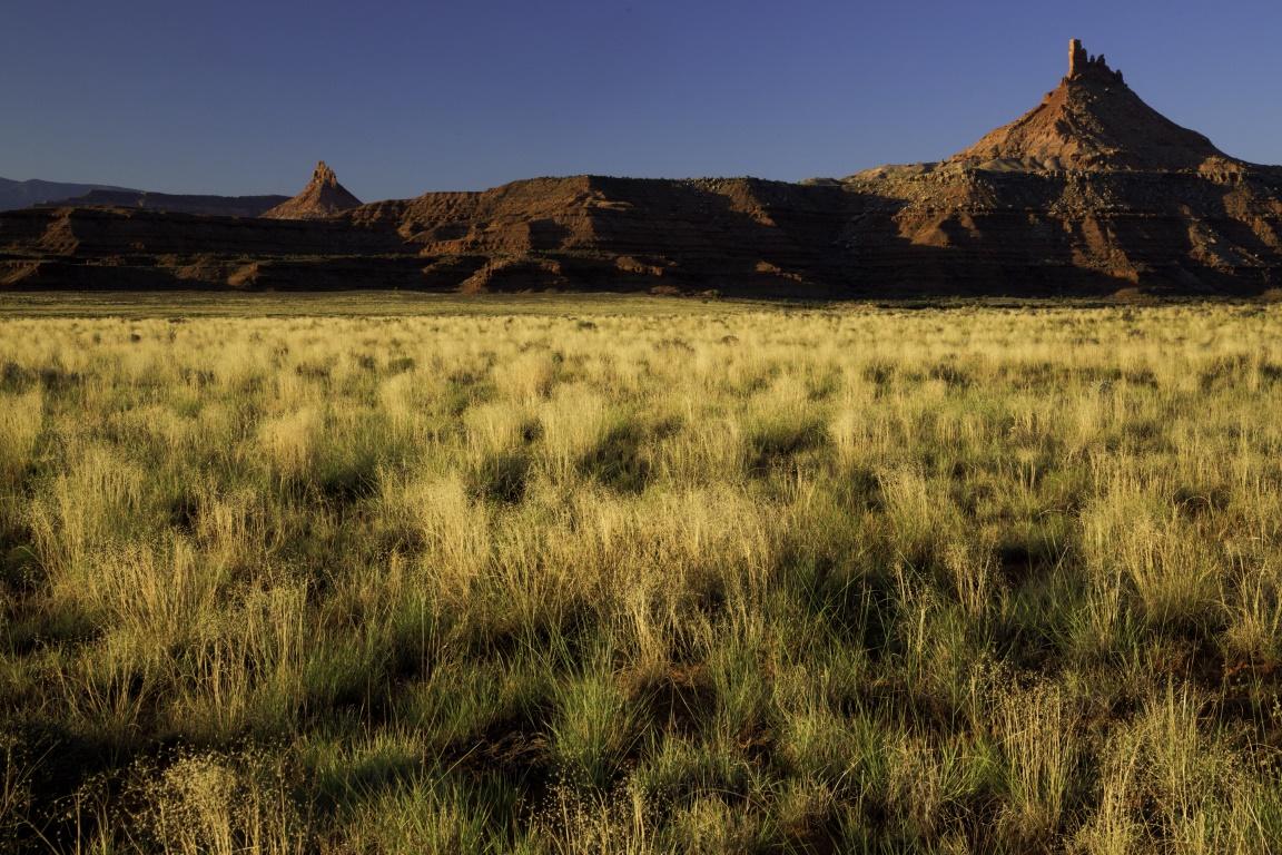 O Monumento Nacional Bears Ears protege as mais importantes paisagens dos Estados Unidos, algumas são sagradas para muitas tribos nativo-americanas. Foto: Bureau of Land Management/Flickr.